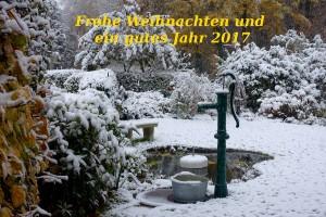 Weihnachtskarte 2016mit textskal